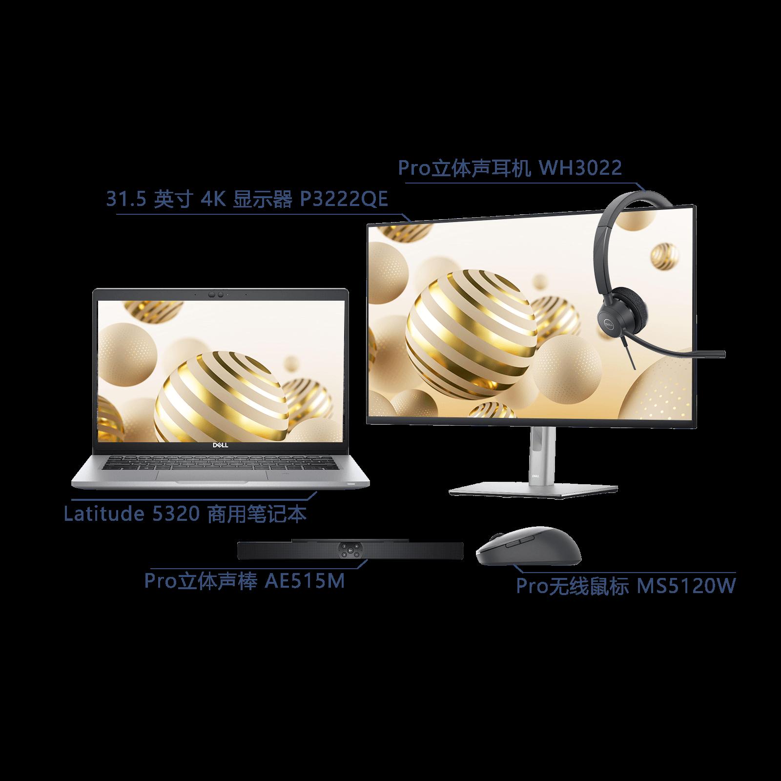 Latitude 5320 移动便携套装 i5-1135G7 8GB 256GB